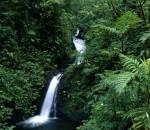 El Turismo en Costa Rica representa uno de los motores de la economía