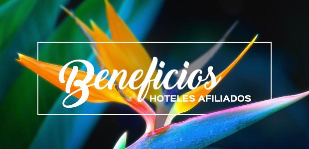 beneficios-hoteles-afiliados-camara-costarricense-de-hoteles