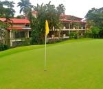 foto ed golf